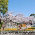 日岡山公園まで432m 徒歩14分(周辺)